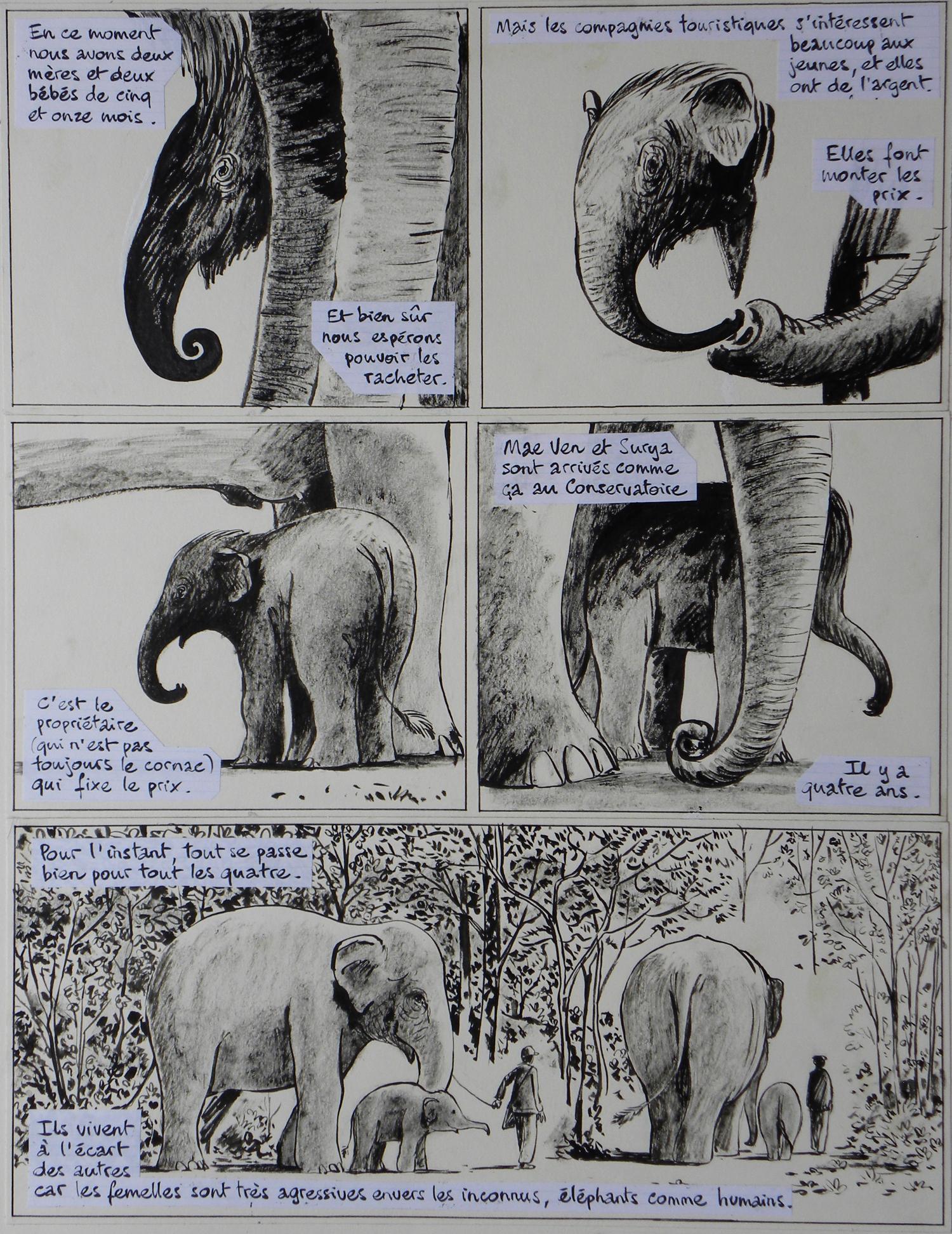 aa- La longue marche des éléphants – Page 26 – Troubs   Galerie ...